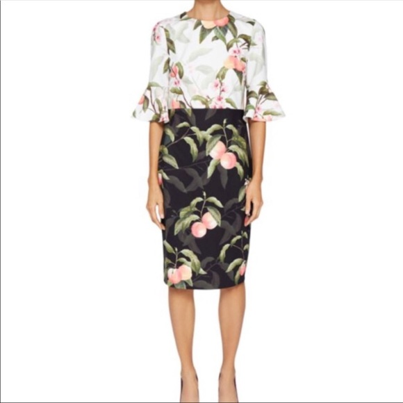 69a45bac567 Ted Baker Dresses | Areea Midi Dress In Peach Blossom Print | Poshmark